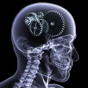 cerveau CPS1